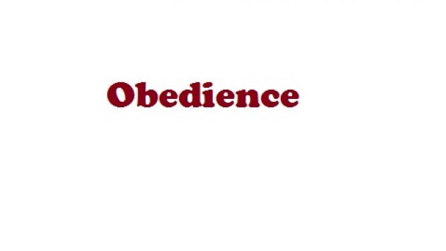 Obedience-Infobrief 01-2019