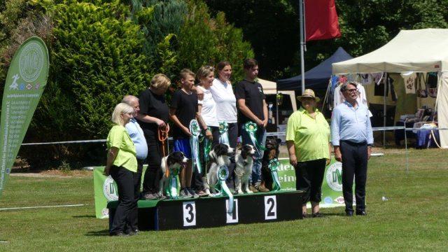 Bundessiegerprüfung  Obedience  in Emmendingen